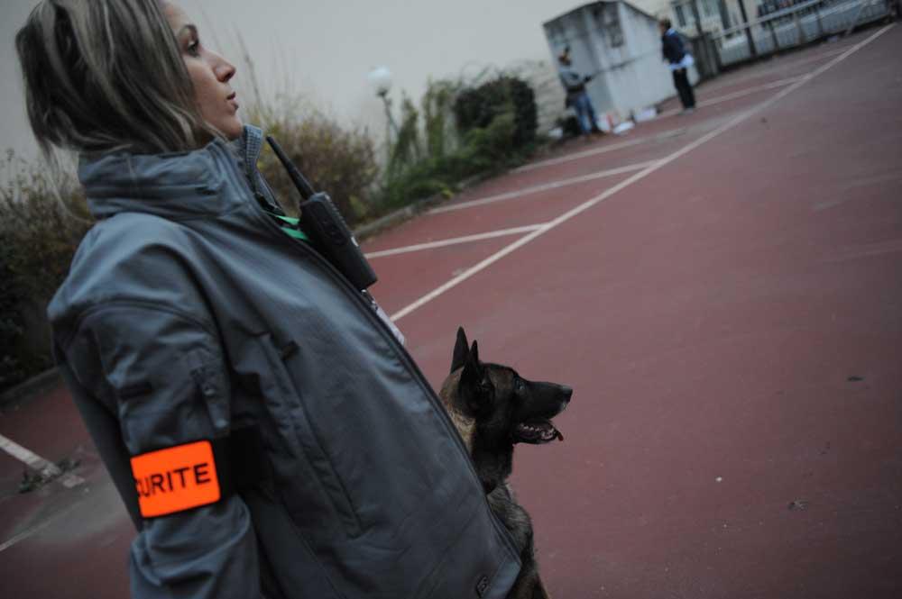 Agent de sécurité cynophile à Paris (75) et région ile de france femmes